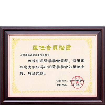 Member of Chinese Society of Acoustics